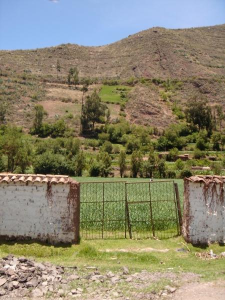 puerta cuzco